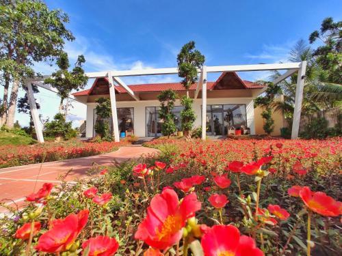 Rooster Mekong Garden & Villas, Chợ Lách