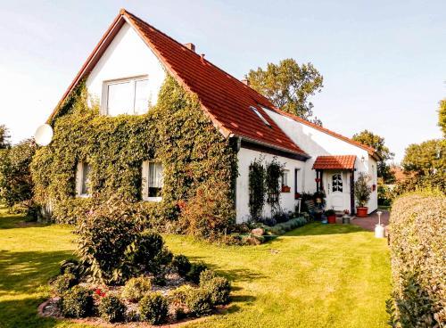 Bungalow und Ferienwohnung auf Rugen, Vorpommern-Rügen