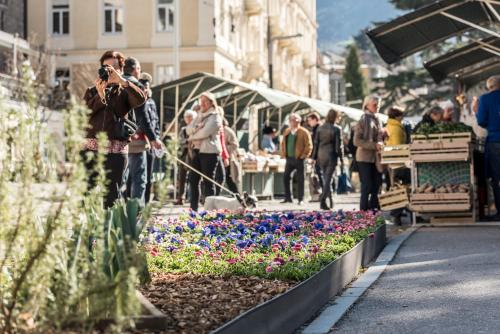 Holiday House Merano - Maia Alta, Bolzano