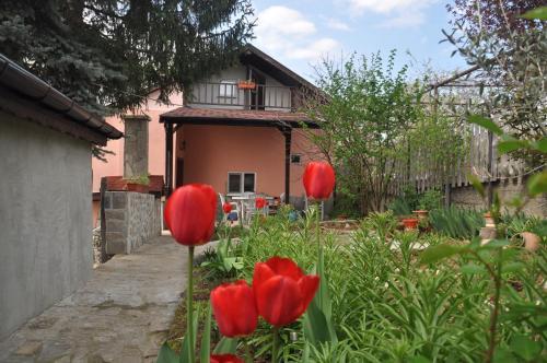 Holiday Home Vilata, Kardzhali