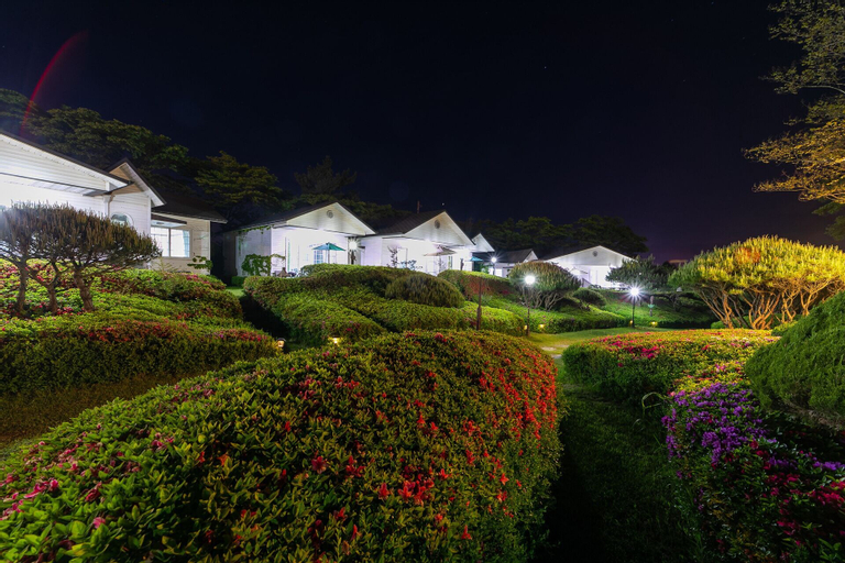 Backhwawon, Taean