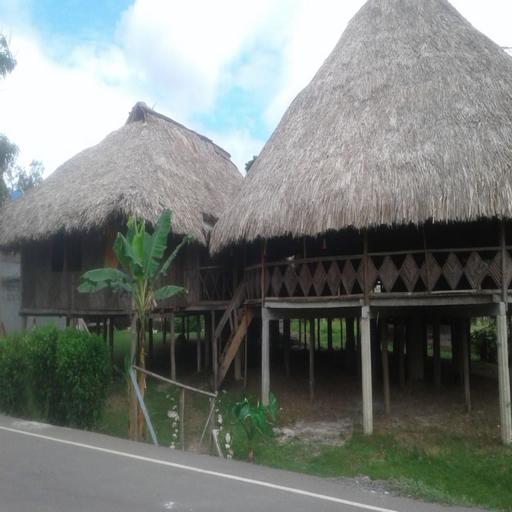 Hospedaje casa cultural wounaan, Chepigana
