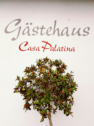 Gästehaus Casa Palatina, Bad Dürkheim