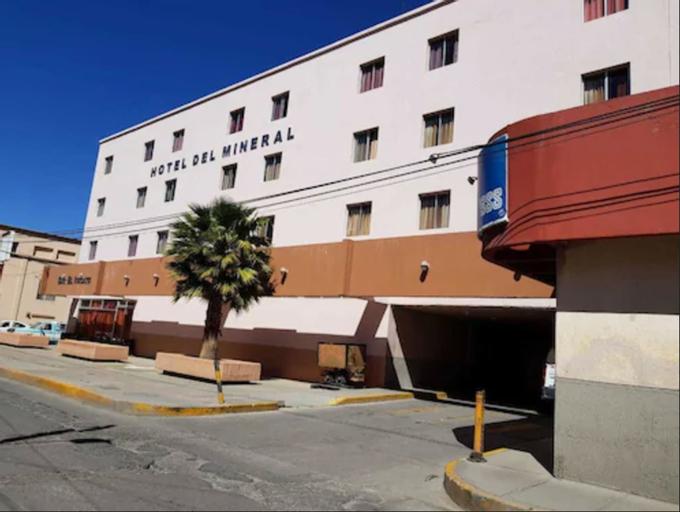 Hotel Del Mineral S.A., Fresnillo