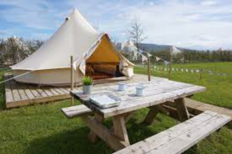 Mellow Yellow Bell Tent - Family Zone, Durham