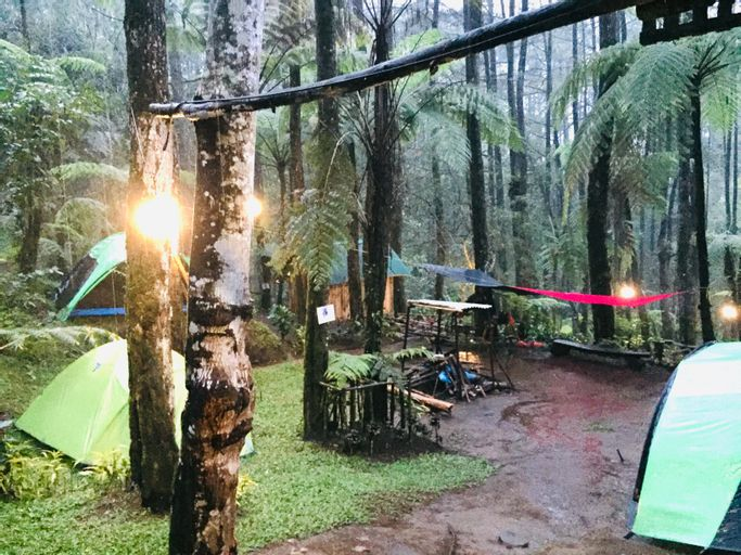 Curug Batu Gede Cisuren Camping Ground, Bogor