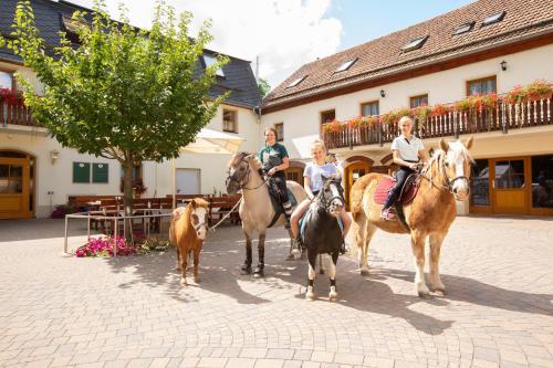 Pension Ferienhof Fischer, Mittelsachsen