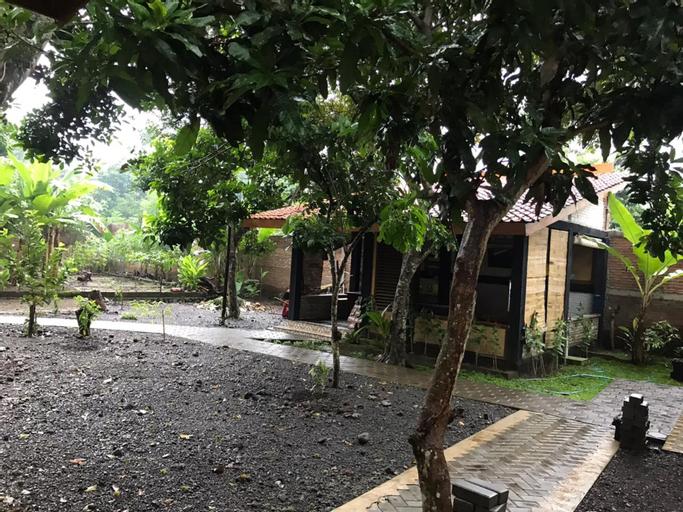 Coconut Tree Homestay, Banyuwangi