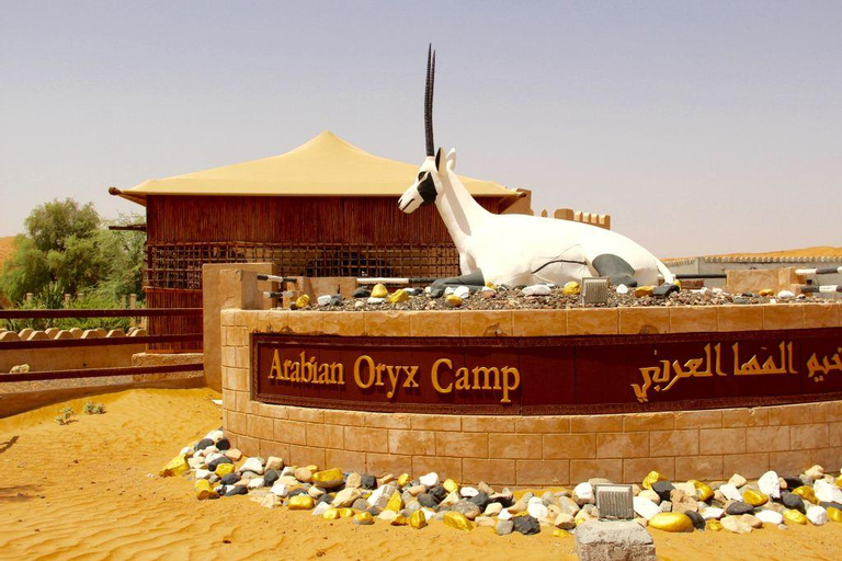 Arabian Oryx Camp, Biddiya