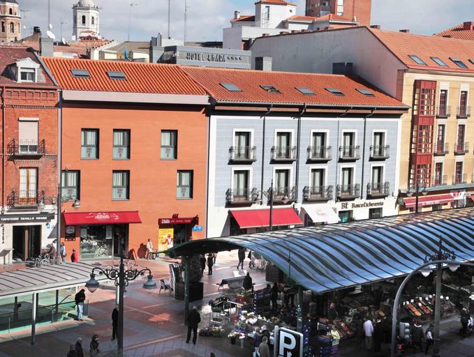 Enara, Valladolid