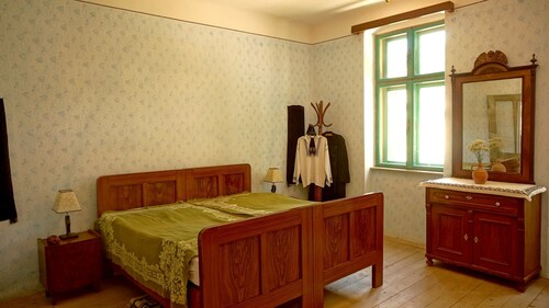 House With 2 Bedrooms In Richis, With Enclosed Garden, Biertan