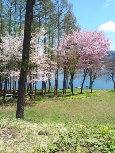 Hotel Blue Lake Resort, Ōmachi