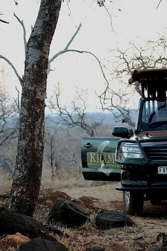 Kilima Private Game Reserve & Spa, Mopani