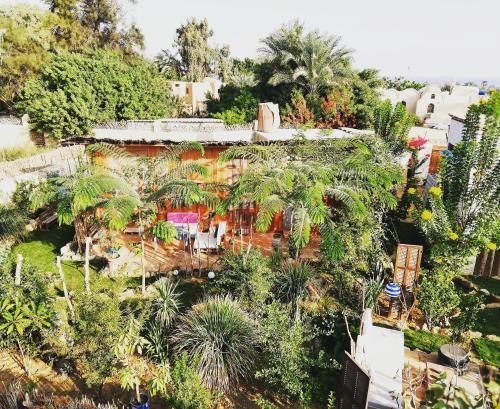 Barefoot in Tunis, Yusuf as-Sidiq