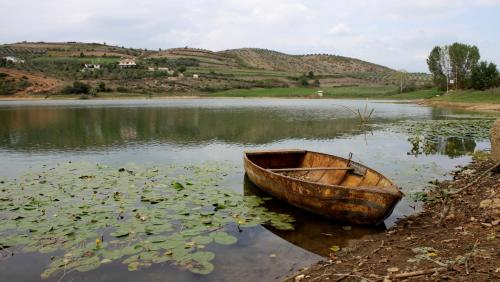 Home Sweet Home on the red lake, Elbasanit