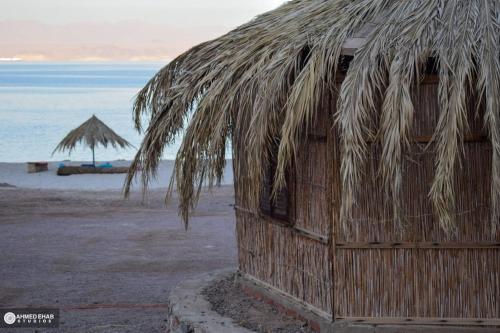 Abdo Caribbean Camp, Nuweiba'