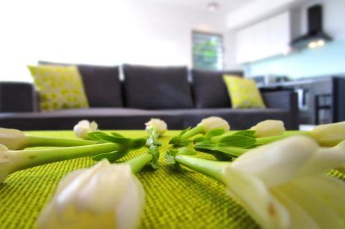 Apartment Heitiare,