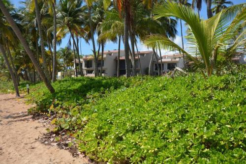 Crescent Cove 87 at Palmas,