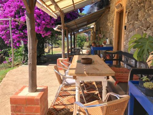 Wild Oasis - Algarve, Monchique