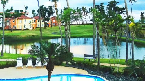 Palm View,