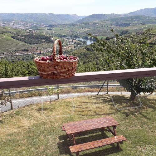 Quinta do Pombal Douro, Lamego