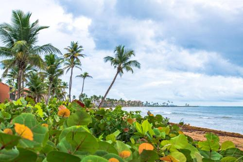 BV103 - Amazing Oceanfront Condo steps from beach,