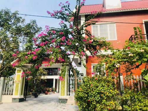 Ninh Binh Brother's Homestay, Ninh Bình