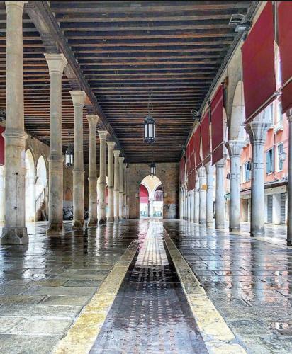 Like at home in heart of Venice, Venezia