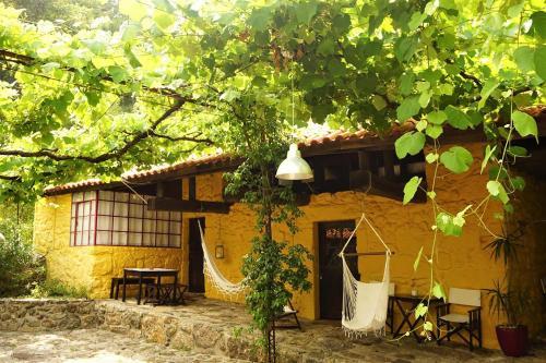 Casa do Piano, Braga