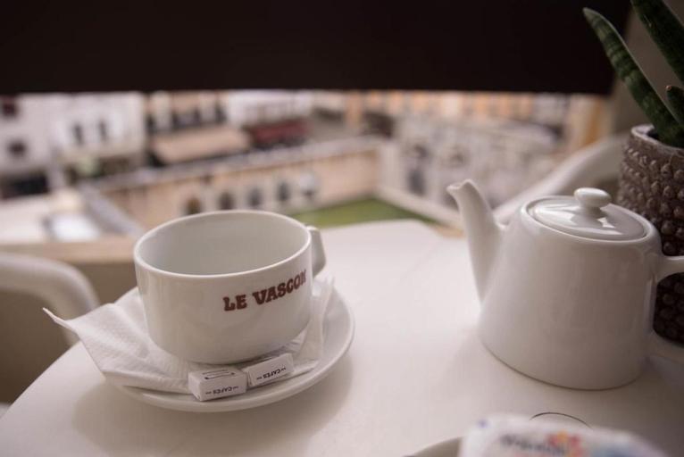 Hotel le Vascon, Landes