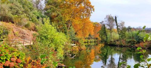 Adore Portugal Bungalow Natureza & Vista de Serra, Lousã