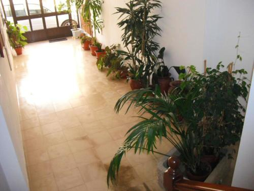 Apartment with one bedroom in Cercal with wonderful city view furnished balcony and WiFi, Santiago do Cacém