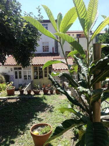Casa de Guadalupe, Braga