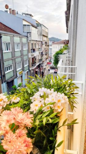 Your Owm Avenida, Braga