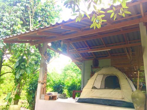 PaSu Garden, Lan Saka