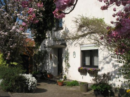 Ferienwohnung Kirschblute, Neunkirchen