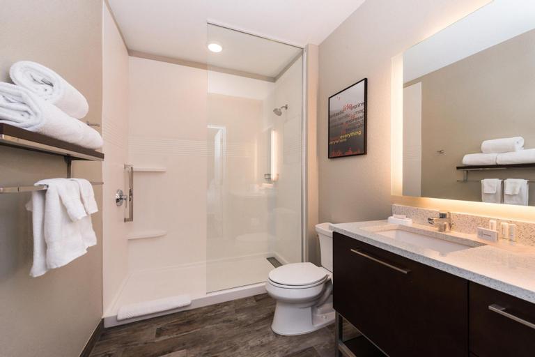 TownePlace Suites Orlando Downtown (Pet-friendly), Orange