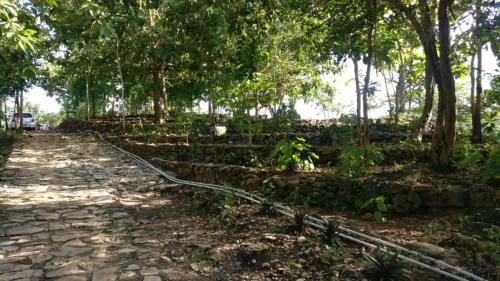 Mojo Resort and Camp Homes, Bantul