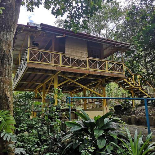 Pili Paninap Farm, Tanay