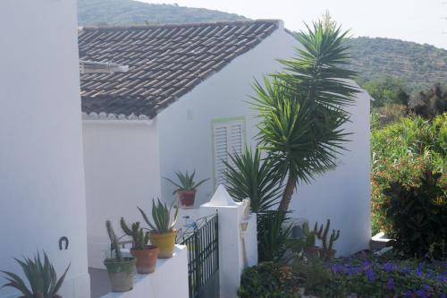Casa Da Cabeca, Faro