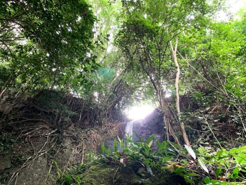 BlackWood: Nature Villa w/Pool, Trail & Waterfalls, Tanay