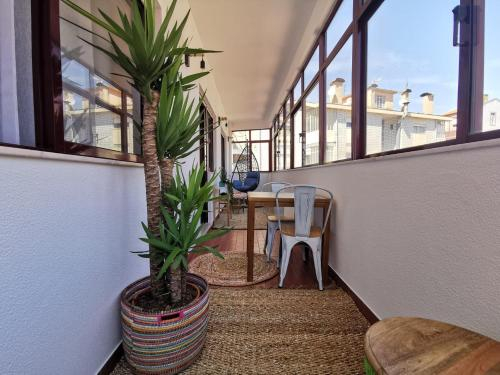 1BR flat with parking and sunroom @ Porto, Porto