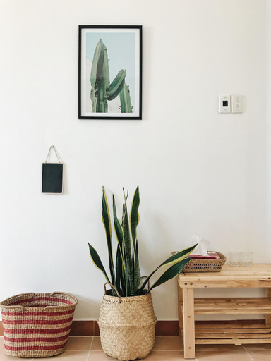 The Downtown Homestay, Quận 1