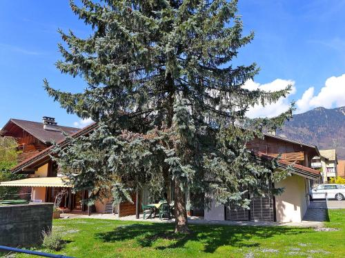 Apartment von Allmen, Interlaken