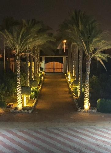 THE PALM PARK, Unorganized in Al Qalyubiyah