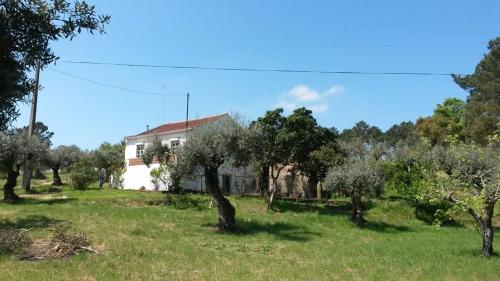 charmant en vrijstaand vakantiehuis, Tomar