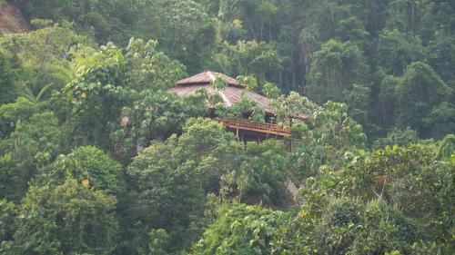 Bukit Lawang Hill Resort, Langkat