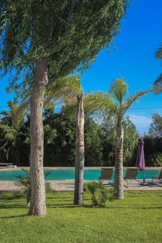 Casa Palmeira, Albufeira