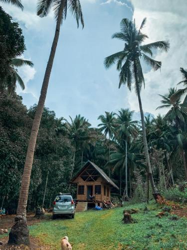 Areca Palm Hut, Catmon
