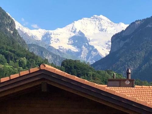 S&P Mountain View Apartment 2, Interlaken
